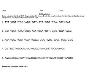 Dna Replication Worksheet Answer Key and Dna Replication Practice Worksheet Answers Livinghealthybulletin